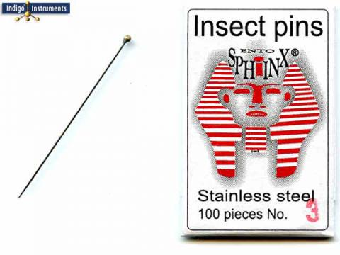 Stainless Steel Insect Pin #3