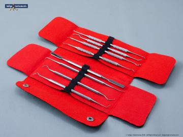 Dental Tool Set